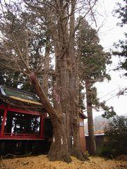 白鳥神社(村田町)